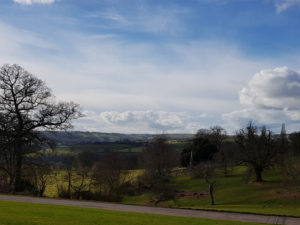 Knightshayse grounds 1