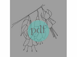 \'Fuschia\' PDF Embroidery Pattern