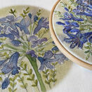 Agapanthus Hand Embroidery Pattern, Linen Panel additional 6